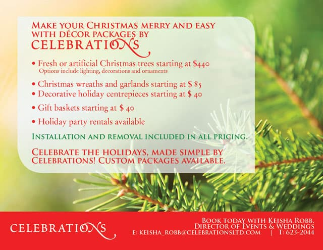 Christmas Decor Packages Made Easy!