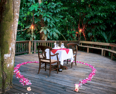 THIS VALENTINE'S DAY YOU COULD WIN A ROMANTIC RAINFOREST RETREAT FOR TWO COMPLIMENTS OF CAYMAN AIRWAYS & THE LODGE AT PICO BONITO!