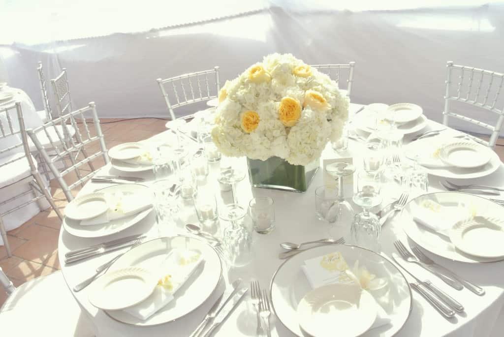 White on White on White: A Monochromatic Cayman wedding