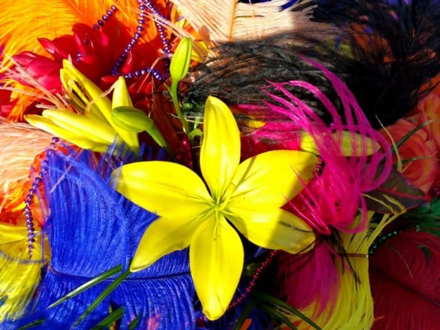 Night Of A Thousand Colors At The Ritz-Carlton Grand Cayman