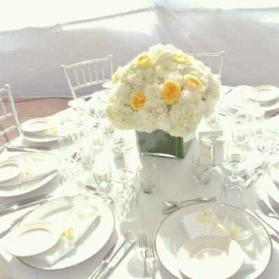 WHITE CAYMAN WEDDING