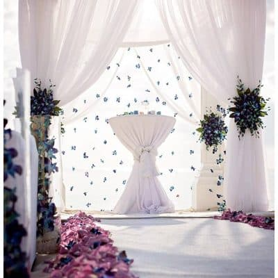 STUNNING WEDDING CHUPPA / CANOPY BY CELEBRATIONS