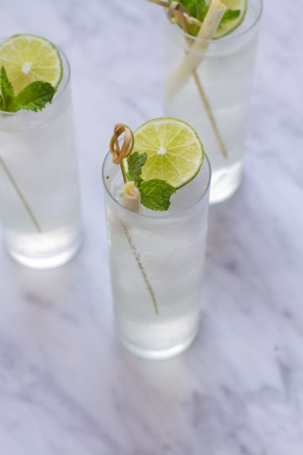 Aida_Mollenkamp_Lemongrass_Gin_Tonic_Recipe_590_