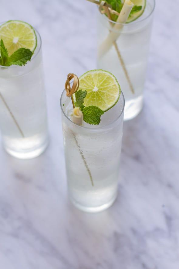 Aida_Mollenkamp_Lemongrass_Gin_Tonic_Recipe_590_