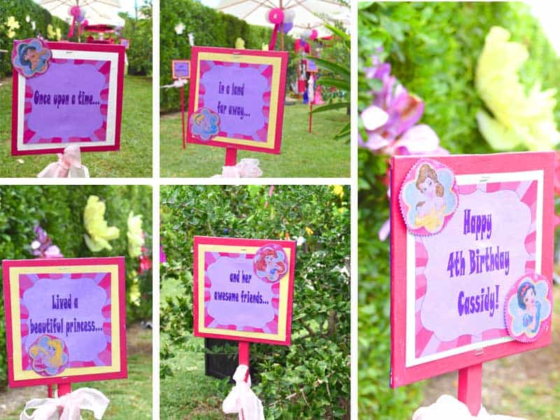 princess party, princess themed party, cayman party, princess party, cayman party rentals