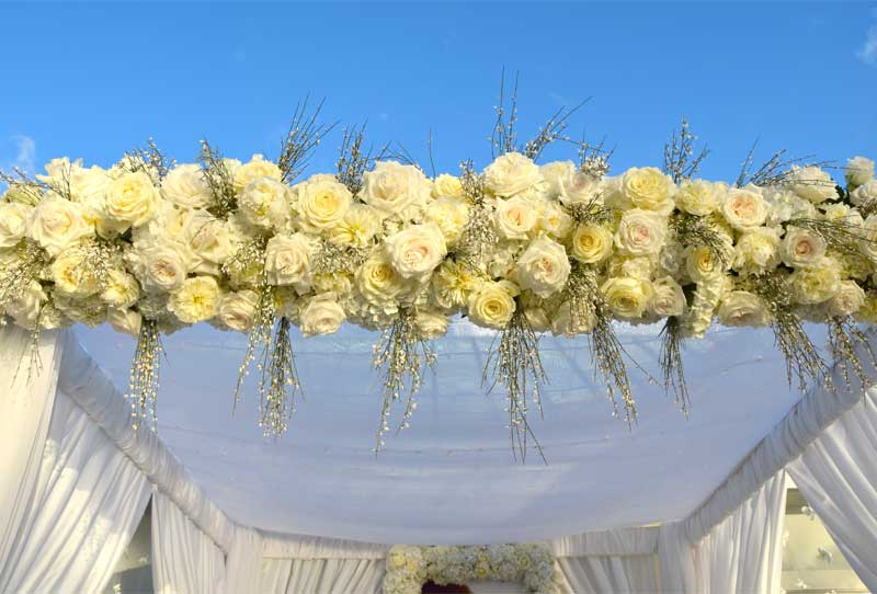 wedding canopy flowers