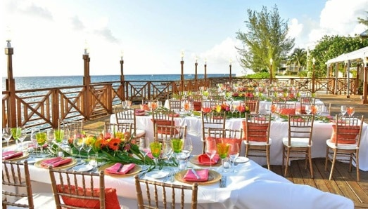 Cayman Islands Locally Grown Flowers For Your Wedding Or Event