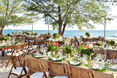 Boho Tropical Beach Wedding