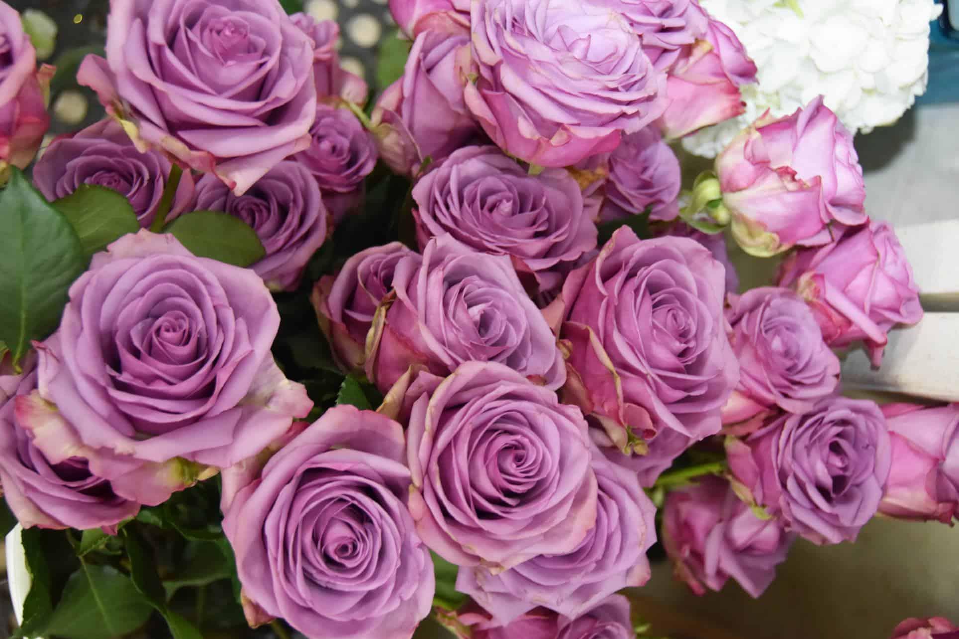 floral-department-3