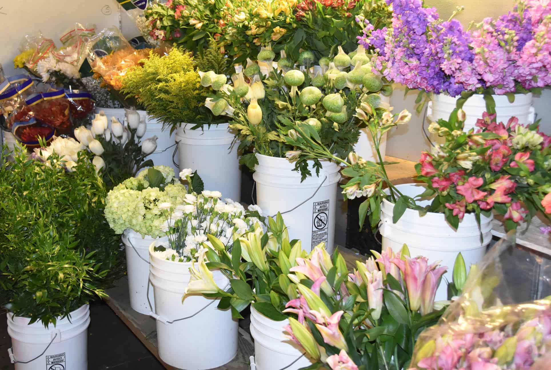 floral-department-6